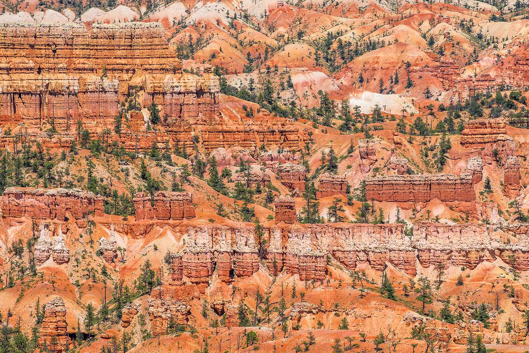 Bryce Canyon National Park Landscape Utah