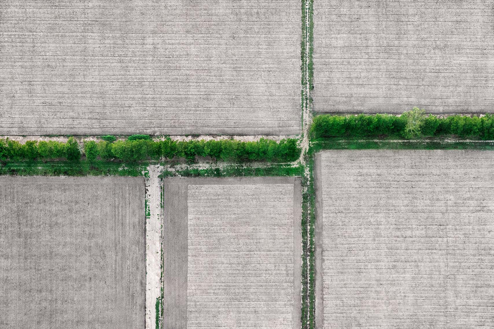 Zoe Wetherall / Aerial Landscape / Divided Field