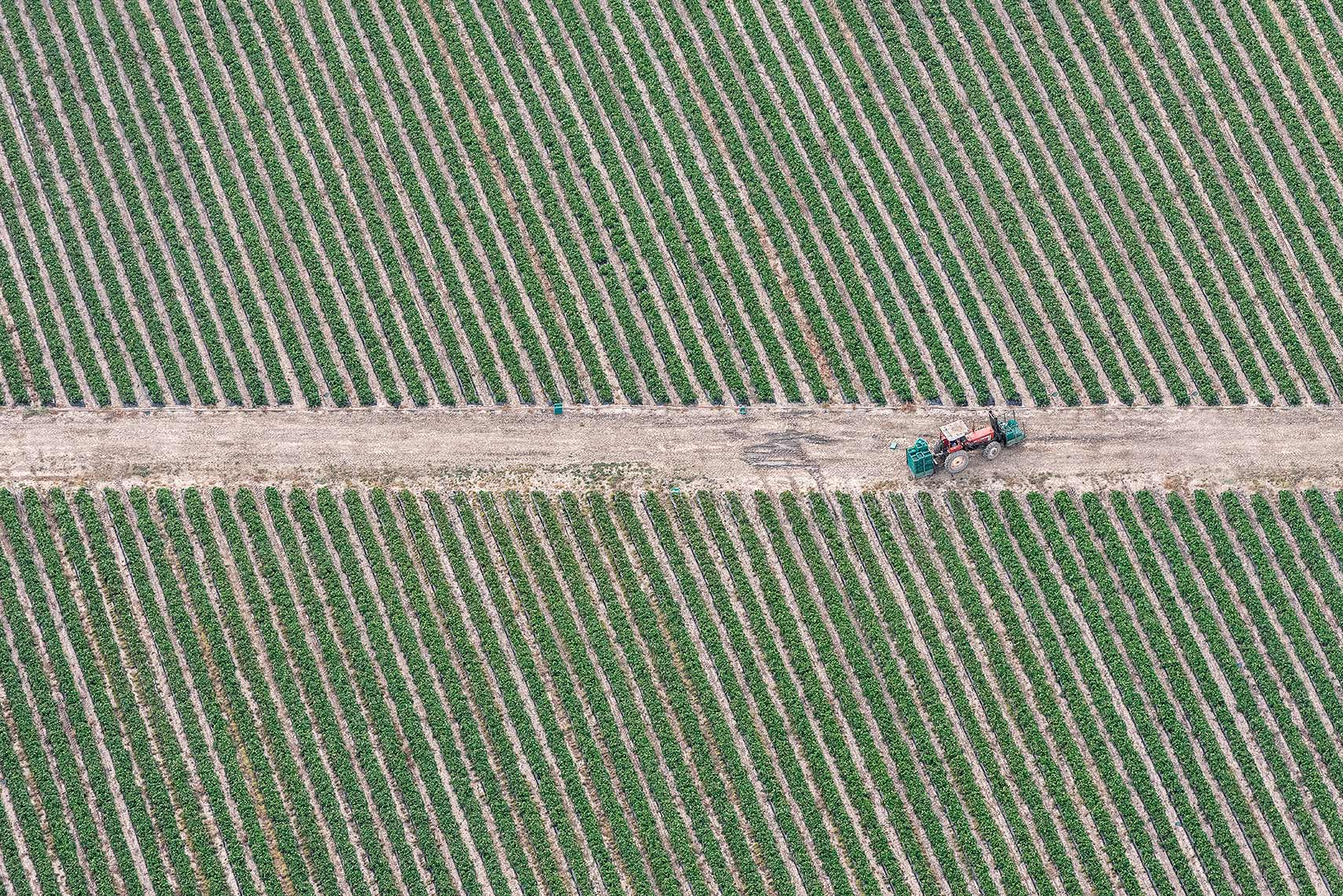 Zoe Wetherall / Aerial Landscape / Tractor
